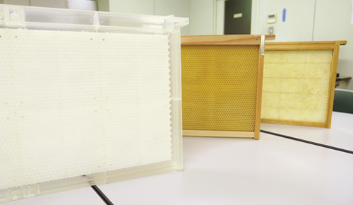 右から通常の巣箱、巣板のみ生分解樹脂を使用、巣板・枠ともに生分解樹脂を使用。