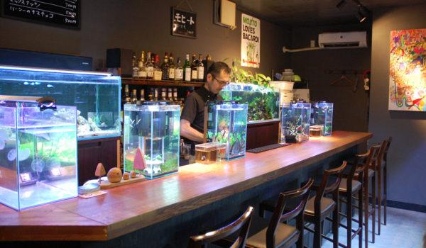 """【飲食店開業への道】""""幻想的な雰囲気""""が人を惹きつけ人気店に"""